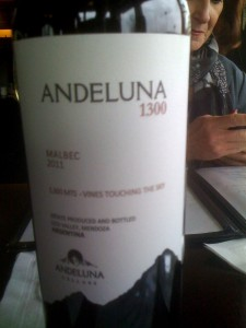 Andeluna 1300 Malbec Argentina 2011