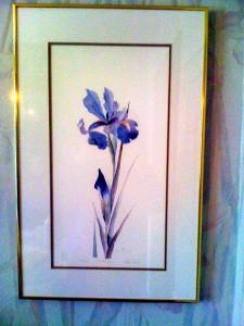 Iris Print 2