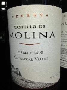 Castillo de Molina Merlot 2008